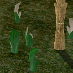 Herbs PitcherPlant.png